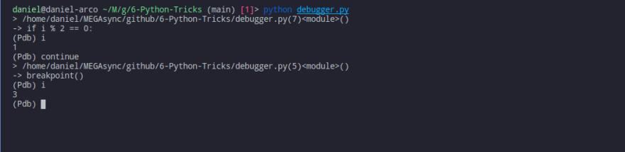 Скриншот терминала, показано использование функции breakpoint